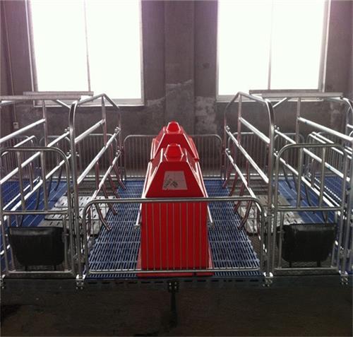猪八戒养殖设备四川经销商销售爆棚