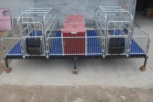平原客户亲自来公司订购猪八戒养殖设备