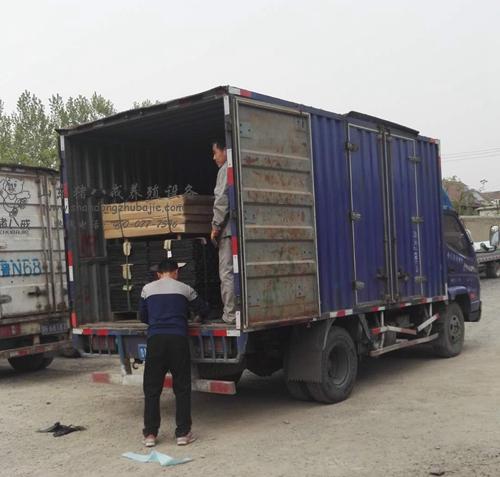 猪八戒养殖设备发往广西钦州